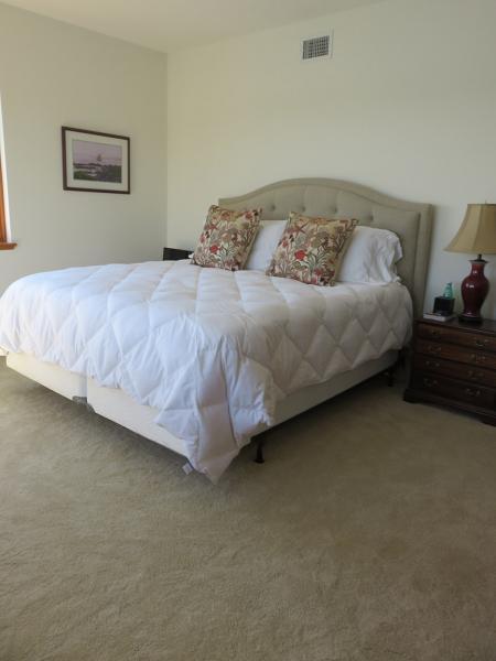 Master-Bedroom with Shaw Carpet Style; Cashmere III, ccs03-color-106-santa-cruz-2